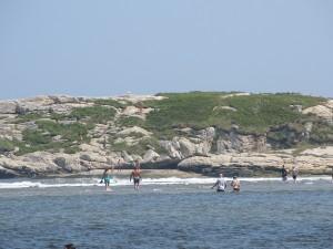 """Popham Beach Island"""